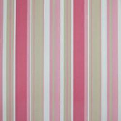Classic Stripes - CT889025
