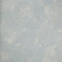 Catálogo- FRAGRANT ROSES -REF: FA811061