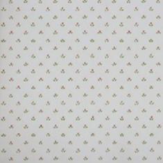 Catálogo- FRAGRANT ROSES -REF: FA811049
