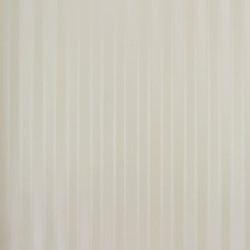 Classic Stripes - CT889071