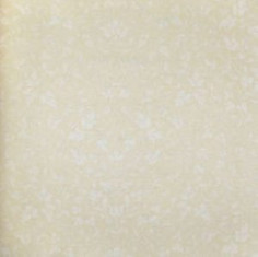 Catálogo- FRAGRANT ROSES -REF: FA811066