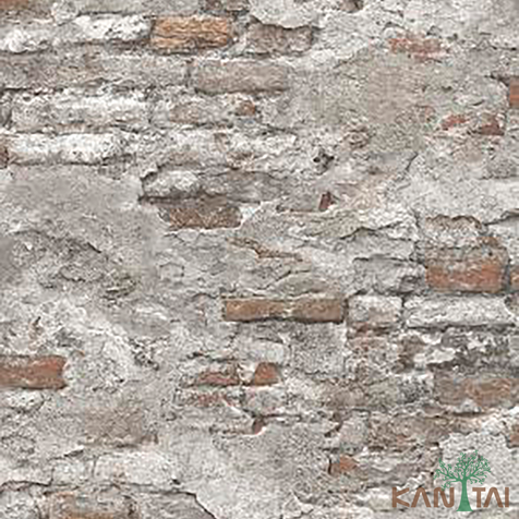 papel de parede stone age - SN605002R