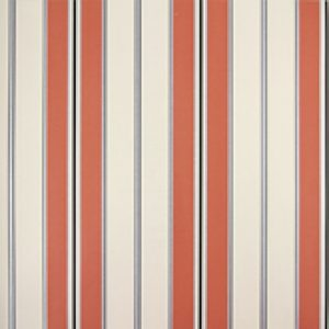 Classic Stripes - CT889100