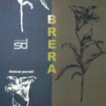 capas_sheirena_vinilicos_brera-150x150.j