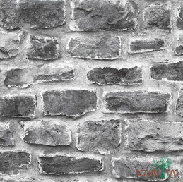 Papel de parede stone age  SN601402R