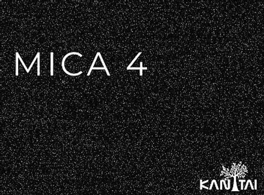 mica4.webp