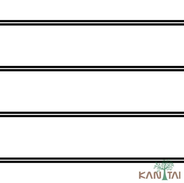 Catálogo- STONE AGE 2 -REF:SN605601R
