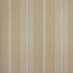 Classic Stripes - CT889020