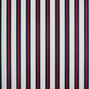 Classic Stripes - CT889053