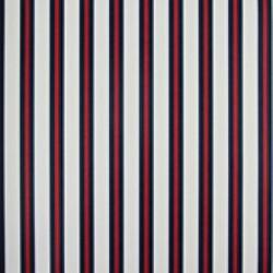 Classic Stripes - CT889053