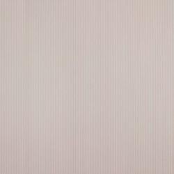 Classic Stripes - CT889075