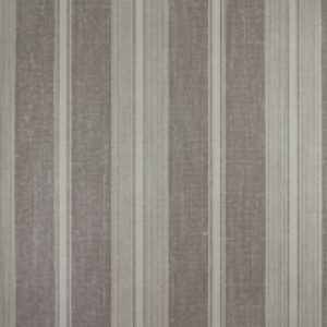 Classic Stripes - CT889019