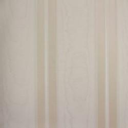 Classic Stripes - CT889113