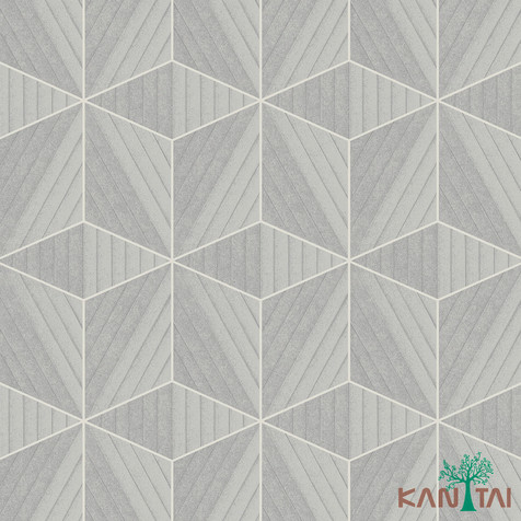 Papel de parede vision   -VI801104R