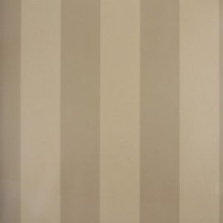 Classic Stripes - CT889011