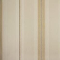 Classic Stripes - CT889096