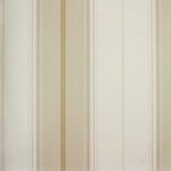 Classic Stripes - CT889104