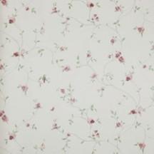 Catálogo- FRAGRANT ROSES -REF: FA811074