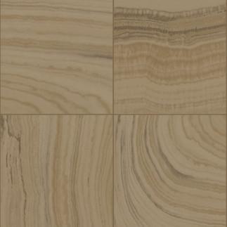 Catálogo- NEONATURE 5 -REF: 5N856103R