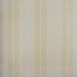 Classic Stripes - CT889047