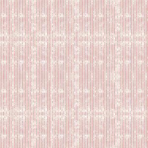 Catálogo – BAMBINOS - REF: 3346