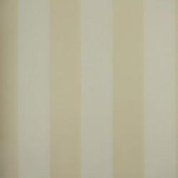 Classic Stripes - CT889009
