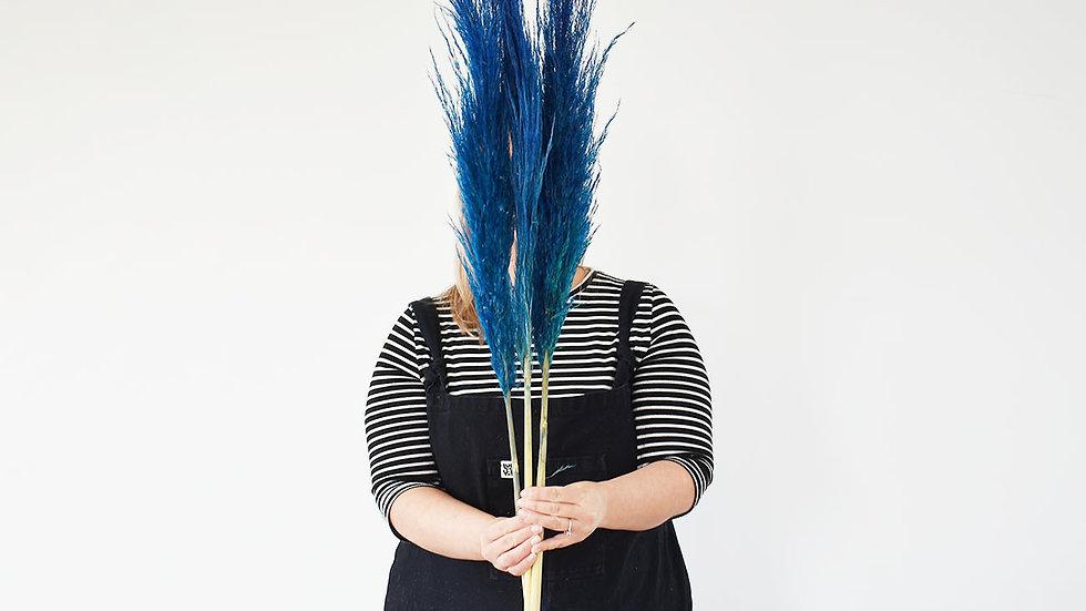 Tall Blue Pampas Grass