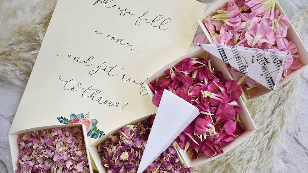 Pink Confetti | Biodegradable Confetti | Confetti Bar