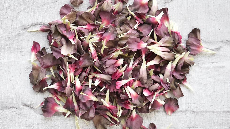 Grey Carnations | Biodegradable Confetti | Confetti
