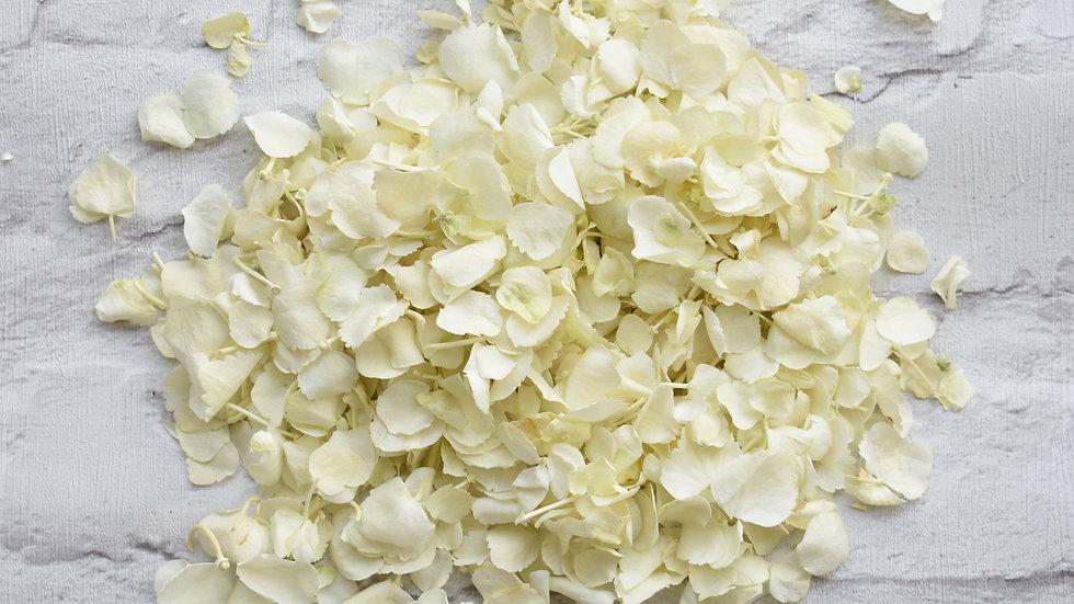 White Hydrangea | Biodegradable Confetti | Confetti