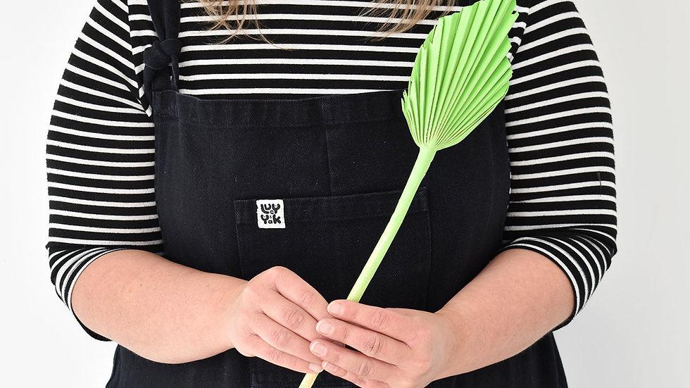 Green Palm Spear| Dried Flowers | Dried Flower Bar UK