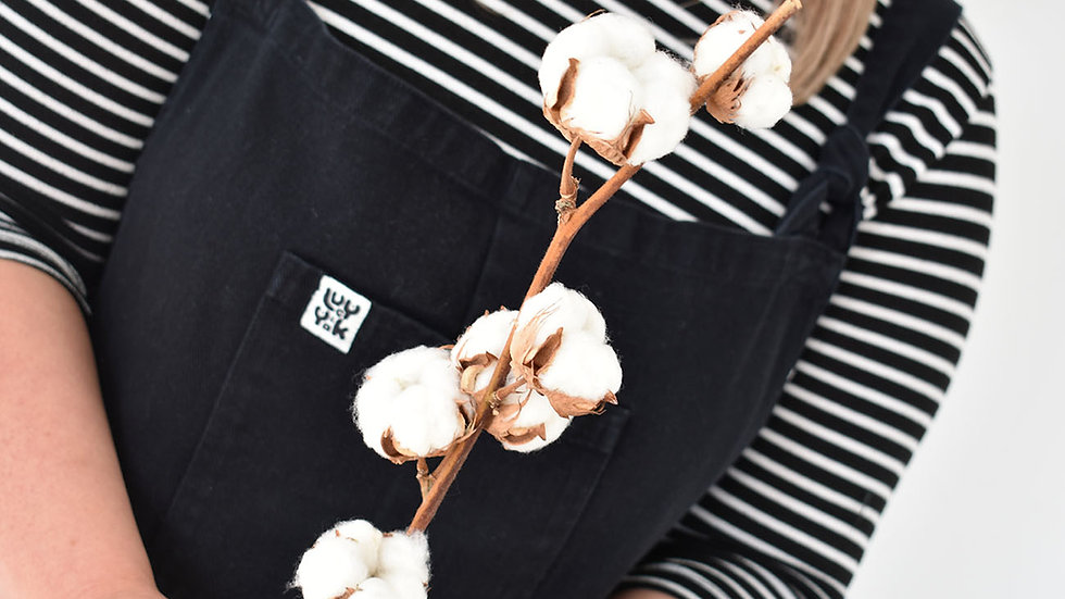 Dried Cotton Branches | Dried Flowers | Dried Flower Bar UK