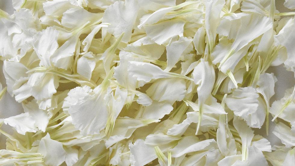 White Carnations | Biodegradable Confetti | Confetti