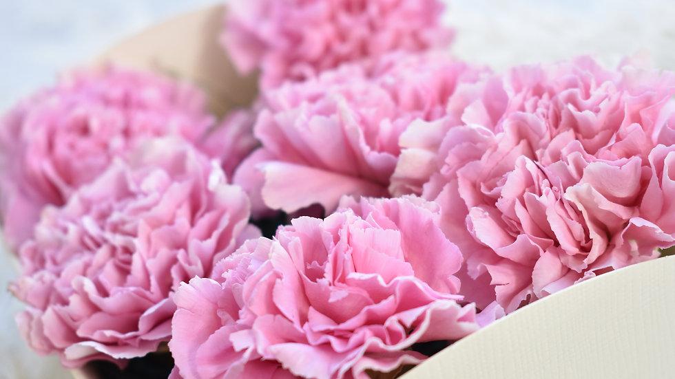 Freeze Dried Pink Carnation | Dried Flowers | Dried Flower Bouquet