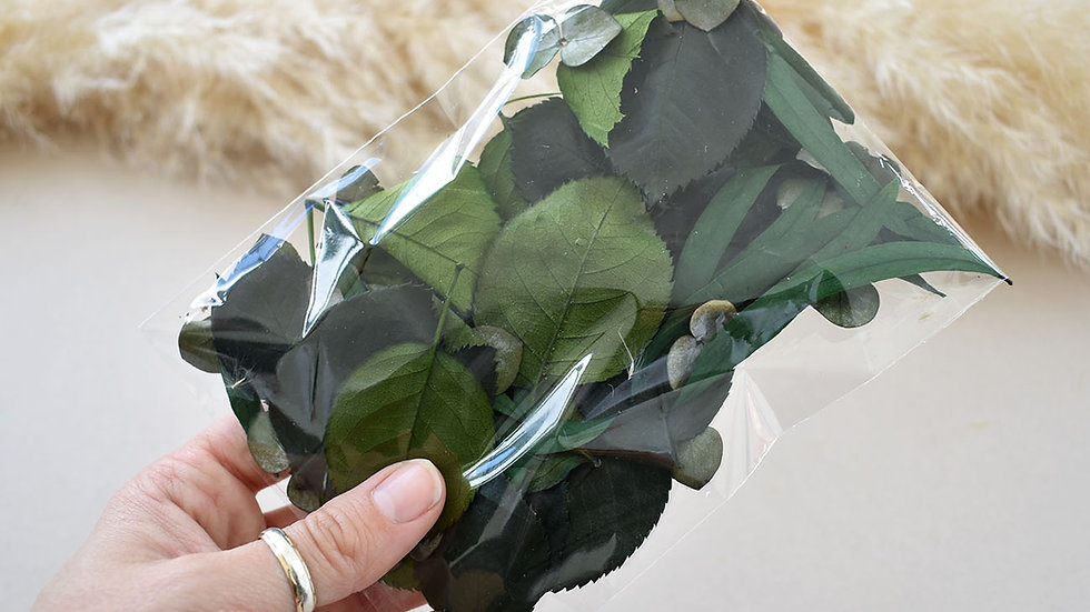 Preserved Greenery Craft Pack   Dried Flowers for crafts   Florist Blackpool