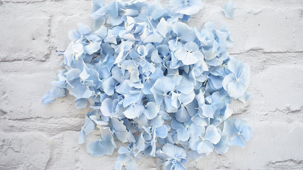 Custom Confetti | Biodegradable Confetti | Baby Blue Lyo Hydrangea Confetti