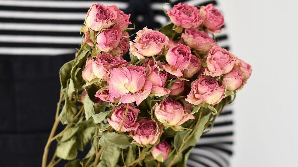 Natural Dried Pink Spray Roses