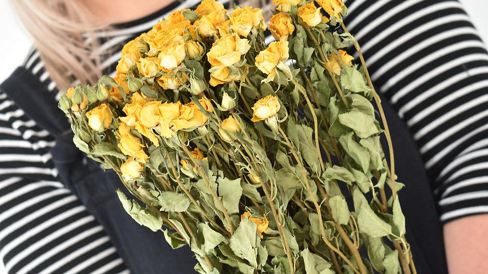 Natural Dried Yellow Spray Roses