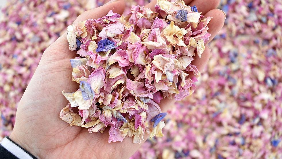 Slowfall Summer Blossom | Biodegradable Confetti | Confetti