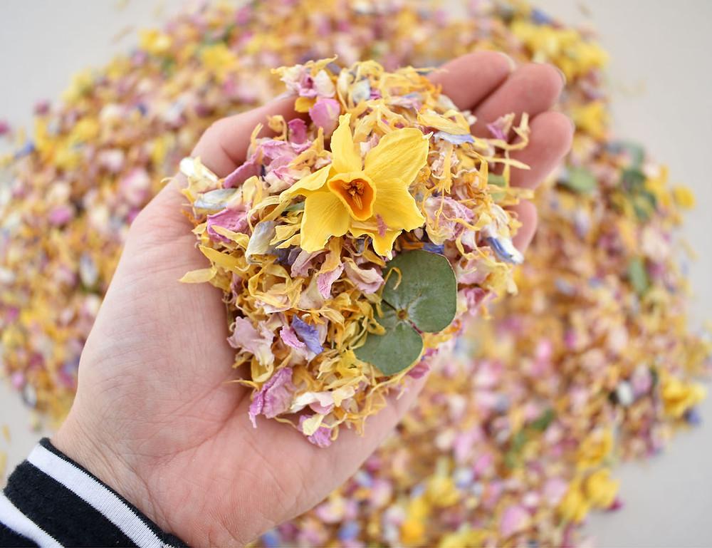 Spring Wedding Confetti   Biodegradable Confetti   Confetti