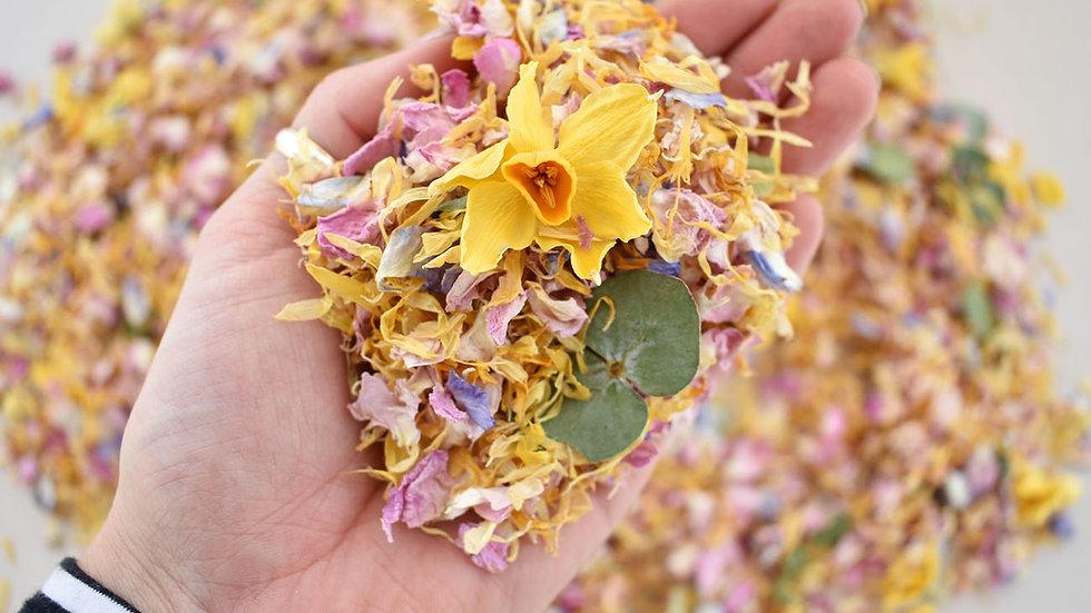 Daffodil Confetti | Biodegradable Confetti | Confetti