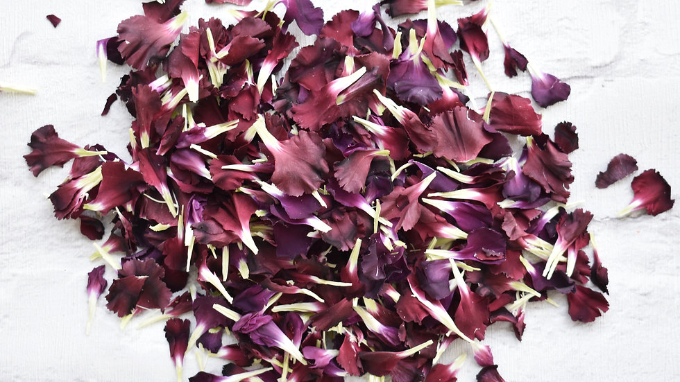 Burgundy Carnation Confetti | Biodegradable Confetti | Natural Confetti
