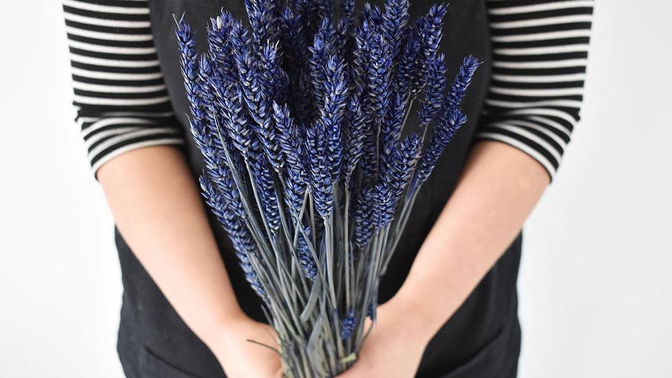 Blue Dried Wheat Bunch