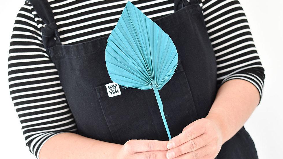 Teal  Palm Spear