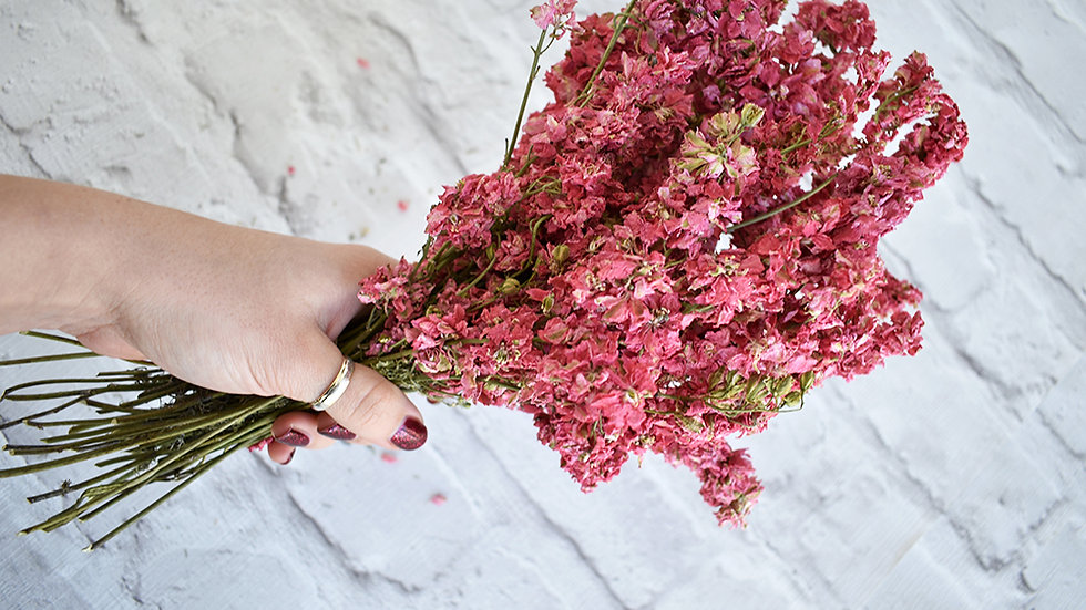 Bright Pink Dried Flowers | Dried Flowers | Dried Flowers how to