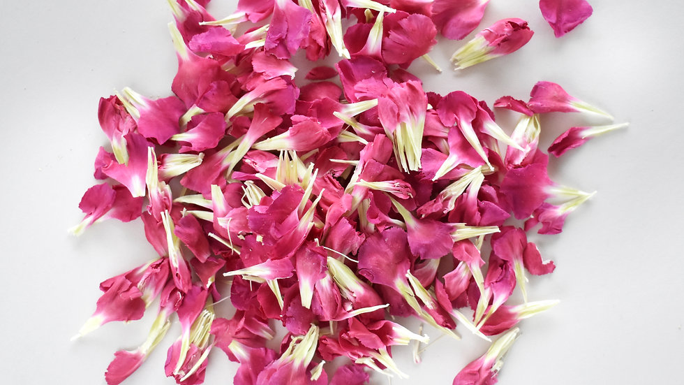 Cerise Carnations | Biodegradable Confetti | Confetti