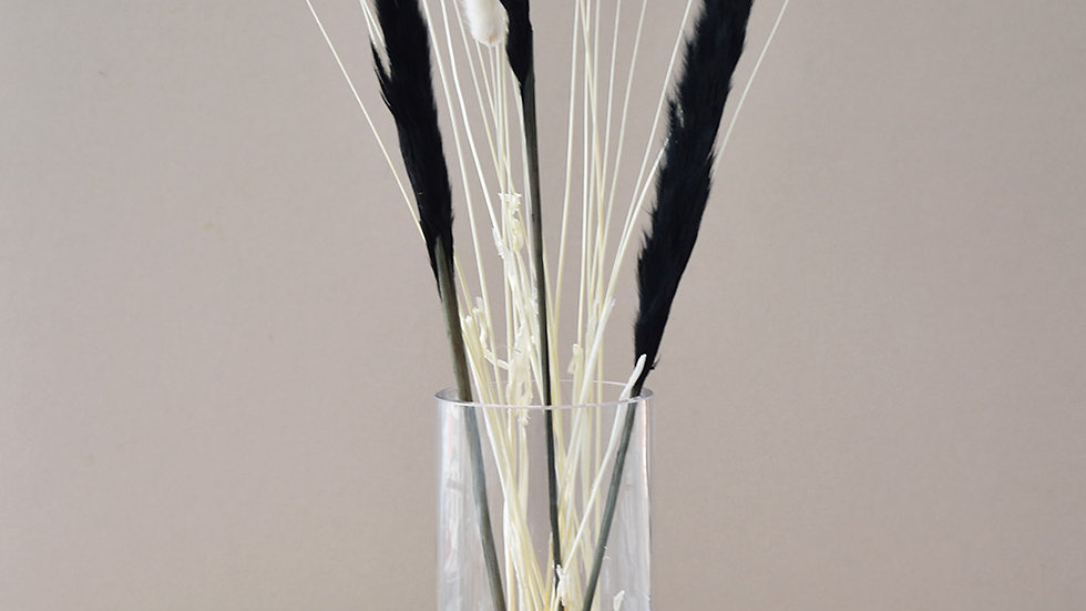 Pampas Grass | Bunny Tails | Bunches