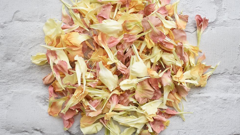 Natural Confetti | Biodegradable Confetti | Confetti