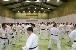 Séminaire_Seiwakai_Goju_Ryu_2015_entrainement10