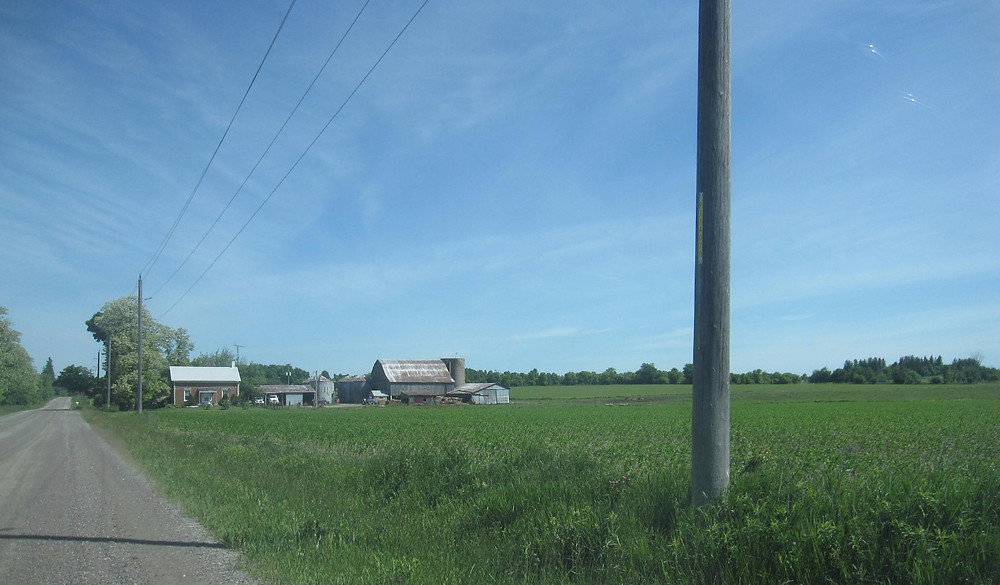 The farm of the Tapscotts, the only remaining farm family that still lives and farms on their farm.  They do not own their home or land as they were expropriated in 1972, but have been surviving on one-year leases.